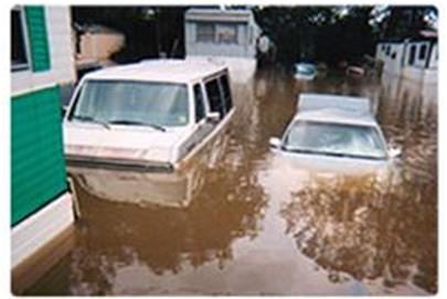 Cropped wet Cars_rounded